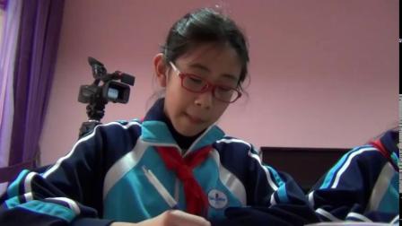 《8.对剪花样》课堂教学视频实录-冀美版小学美术二年级上册