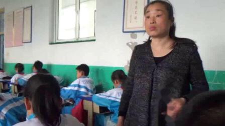《6.大花鸡》教学视频实录-冀美版小学美术四年级上册