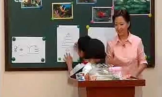 《鱼儿游游》小学美术一年级上优质课视频