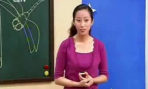 《蜻蜓飞飞》小学美术二年级上册大发快三中奖技术_大发快三大小单双技巧课视频