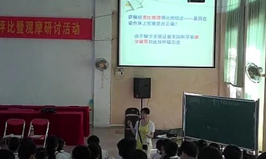 《基因在染色体上》2013年海南省高中生物教学评比优质课视频-符月玲