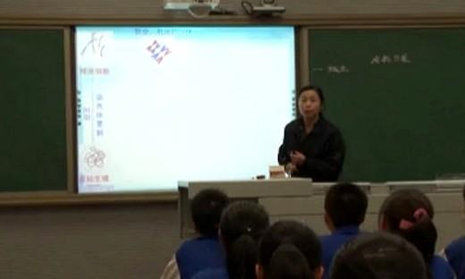 《减数分裂》高中生物优质课视频-吴兰