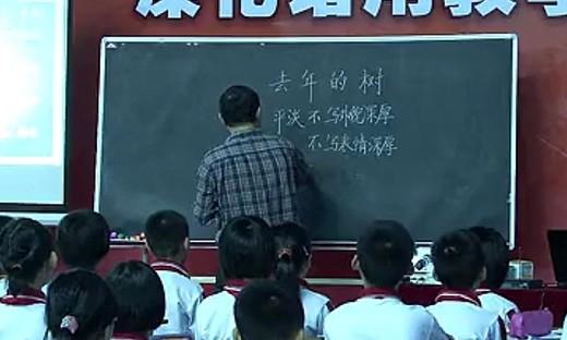 王崧舟《去年的树》(三年级)_2014小学语文名师课堂