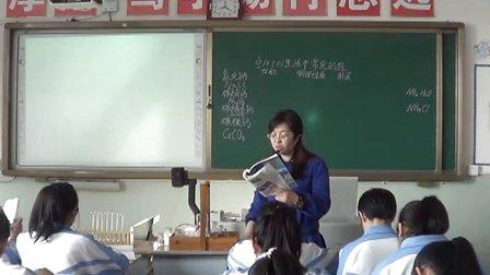 初三化学教学视频《生活中常见的盐》何玫