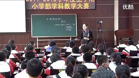 小学科学《电磁铁的磁力》教学视频,王琪