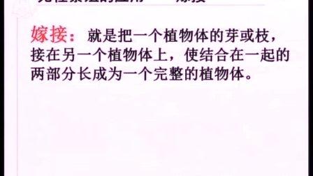 人教版八年级生物下册《植物的生殖》教学视频,北京市