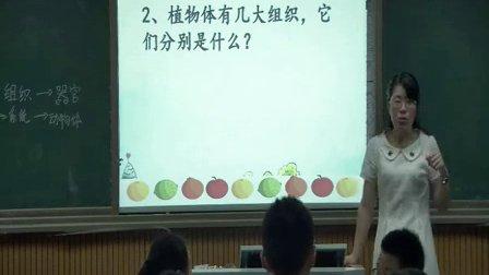 人教版七年级生物上册《植物体的结构层次》教学视频,湖南省