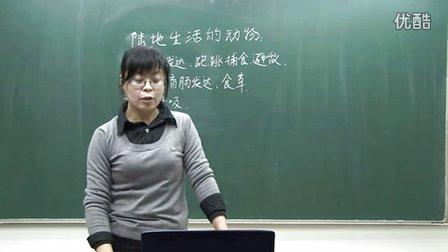 初中生物人教版八年�《�地生活的�游�-家兔》名��微型�n  北京�T�s�u