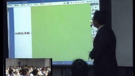 第五届电子白板大赛《生命活动的主要承担者―蛋白质》(人教版生物高一,广州市真光中学:侯磊)