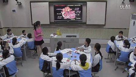 初中生物人教版七下《输送血液的泵―心脏》湖南张燕