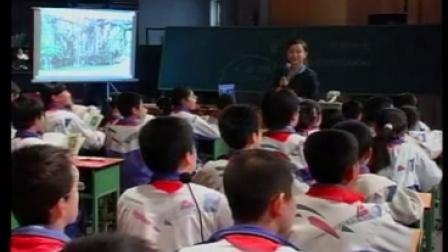 全国第六届青年教师阅读教学观摩《鸟的天堂》人教版小学语文四上,广东:汪秀梅