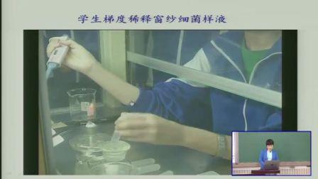 中学生物高二《微生物的培养与应用》说课 北京周潜英(北京市首届中小学青年教师教学说课大赛)