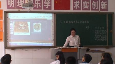 《推动社会进步的科技成就》北师大版七年级历史-安慧馨