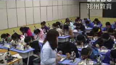 《观察植物细胞》初一生物-郑州枫杨外国语学校:唐俊换