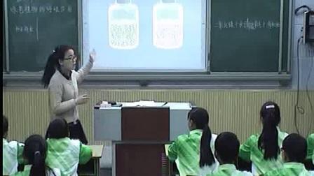 《绿色植物的呼吸作用》初一生物-郑州七十九中:田静