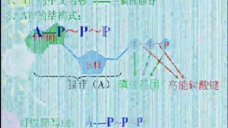 """《细胞的能量""""通货""""――ATP》高一生物-中牟县第一高级中学:王利强"""