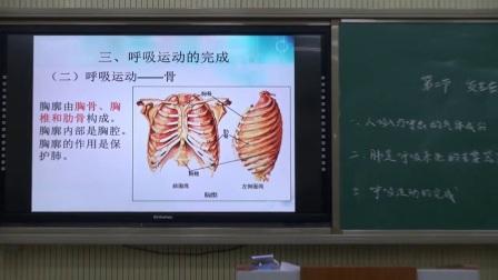 人教版初中生物七下《3.2  �l生在肺�鹊�怏w交�Q》北京周晗�f