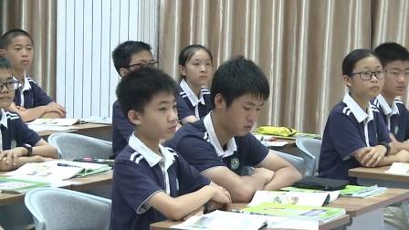 初中地理人教版七下《9.2  巴西》广东 杨丽