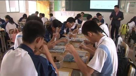 《二氧化碳的性质和用途》优质课(北师大版化学九年级第八章第2节,李大川)