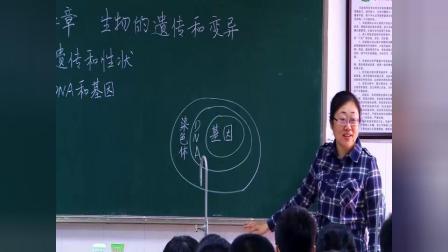 初中生物人教版八下《7.2 生物的遗传和变异》广东张帆