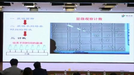 初中生物《种群数量的变化》说课 北京马会放