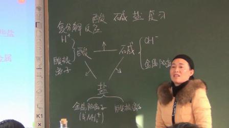 华师大版科学九上第一章《酸碱盐》复习课 课堂教学视频实录-王质洁