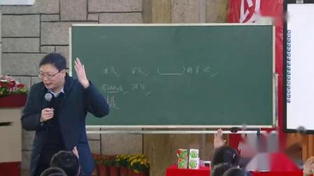 《雾凇》小学语文-儿童阅读课程推进大会名师教学视频-薛法根