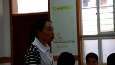 华师大版科学七下2.4《二氧化碳制取探究》课堂教学视频实录-邵琳