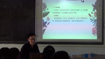 初中語文通用《病句辨析與修改》教學視頻實錄-袁甜樂