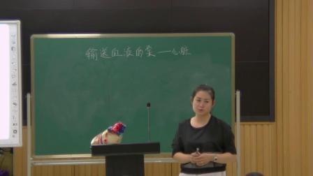 人教2011课标版生物七下-4.4.3《输送血液的泵 -心脏》教学视频实录-吴珊