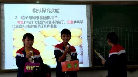 人教2011课标版生物八下-7.2.4《人的性别遗传》课堂教学视频-唐兴林