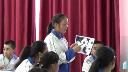 《第4课 扮靓生活的花卉纹样》湘美版美术七下-宁夏-刘瑶