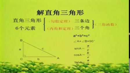 北��大版��W 九下 第一章第四�《解直角三角形》�n堂教�W��l-�⑷鸾�