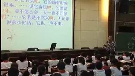 《猫》部编版小学语文四年级下册优质课视频-黄吉鸿