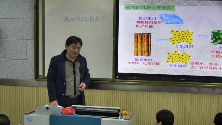 人教2011课标版生物 七上 第二单元第二章第三节《植物体的结构层次》视频课堂实录(姚成龙)
