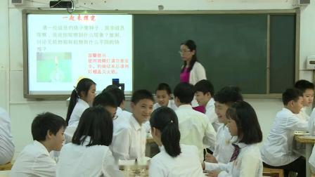 人教2011课标版生物 七上 第二单元第一章第四节《细胞的生活》课堂教学视频-雷尼亚