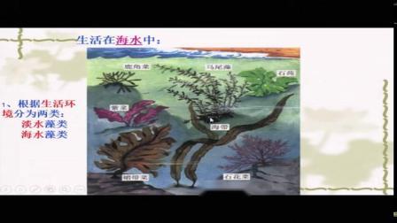人教2011课标版生物 七上 第三单元第一章第一节《藻类、苔藓和蕨类植物》课堂教学视频-候志梅