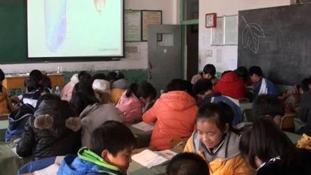人教2011课标版生物 七上 第三单元第一章第二节《种子植物》课堂教学视频-王东玉