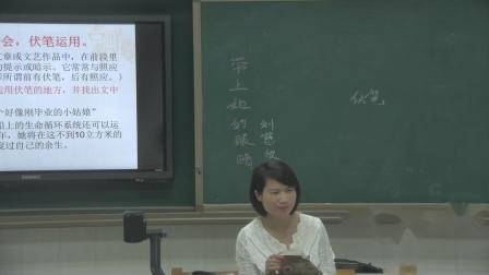 人教部编版语文七下第23课《带上她的眼睛》课堂教学视频 -周晶