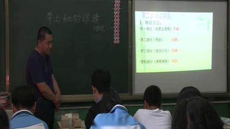 人教部编版语文七下第23课《带上她的眼睛》课堂教学视频 -于忠江